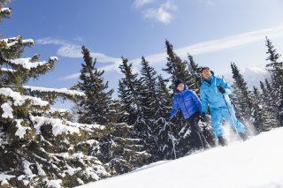 Aktivhotel Panorama Schneeschuhwandern