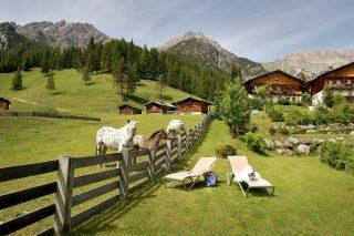 Almwellness Resort Tuffbad Natur