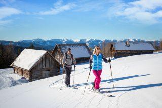 Steffner-Wallner Skitour