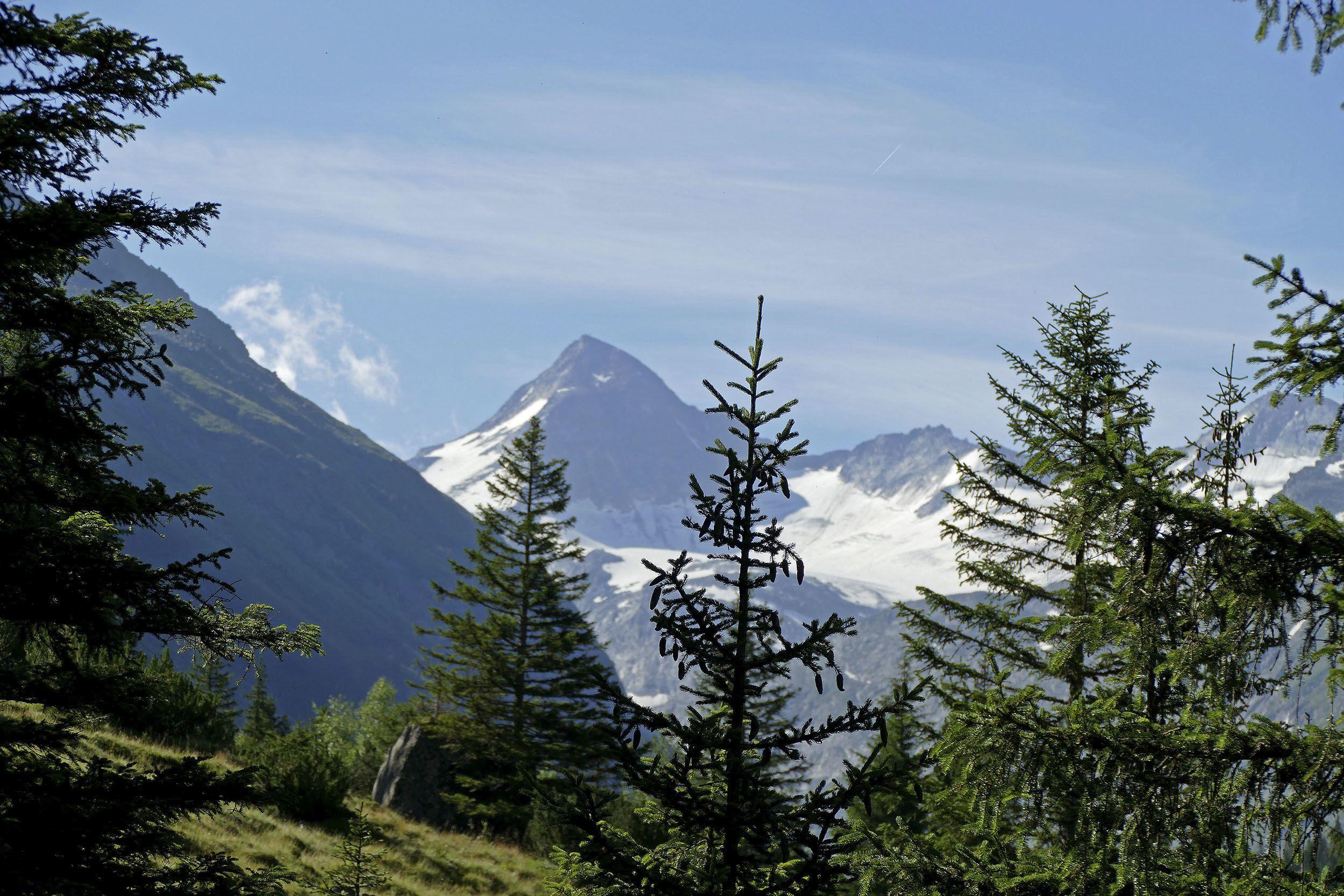 Wanderung ins Obersulzbachtal
