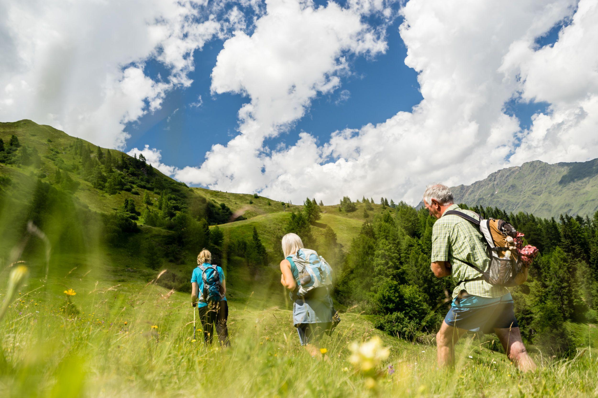 Wanderung zur Wild'n Alm