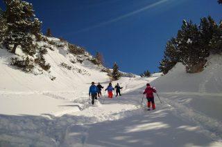 Der Brandstetterhof Schneeschuhwandern