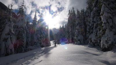 Erlebnishotel Waltershof Winterwandern