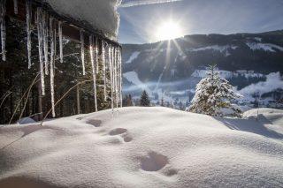 Wanderhotel Poppengut Winterlandschaft©Johannes Kernmayer